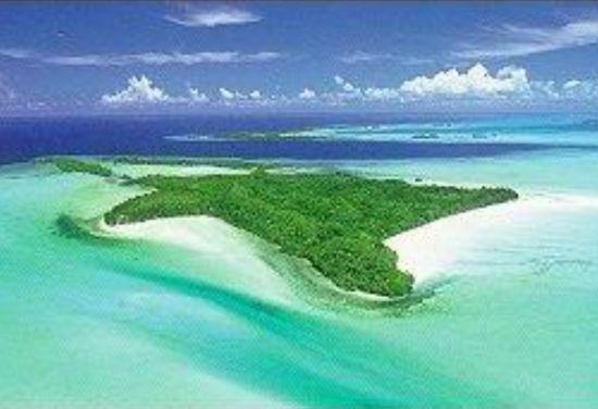star shaped carp island