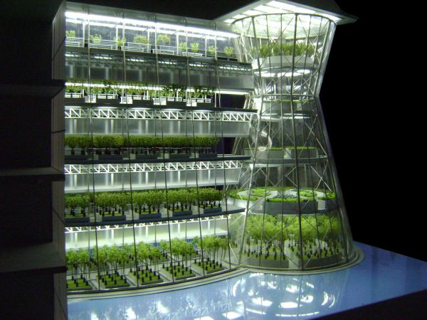 Vertical farming in building