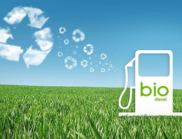 biodiesel_4
