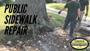 Public Sidewalk