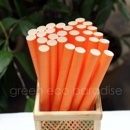 Boba Paper Straws