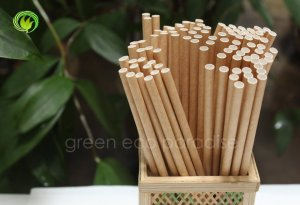 Paper straw supplier Malaysia