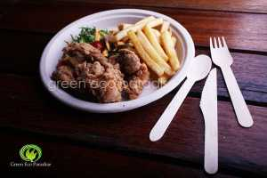 Biodegradable plate with wooden cutlery