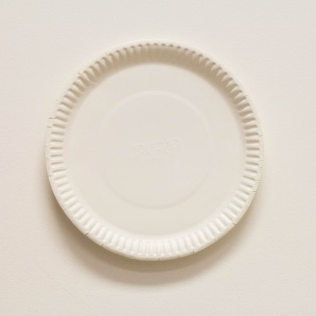 9'' Paper Plate