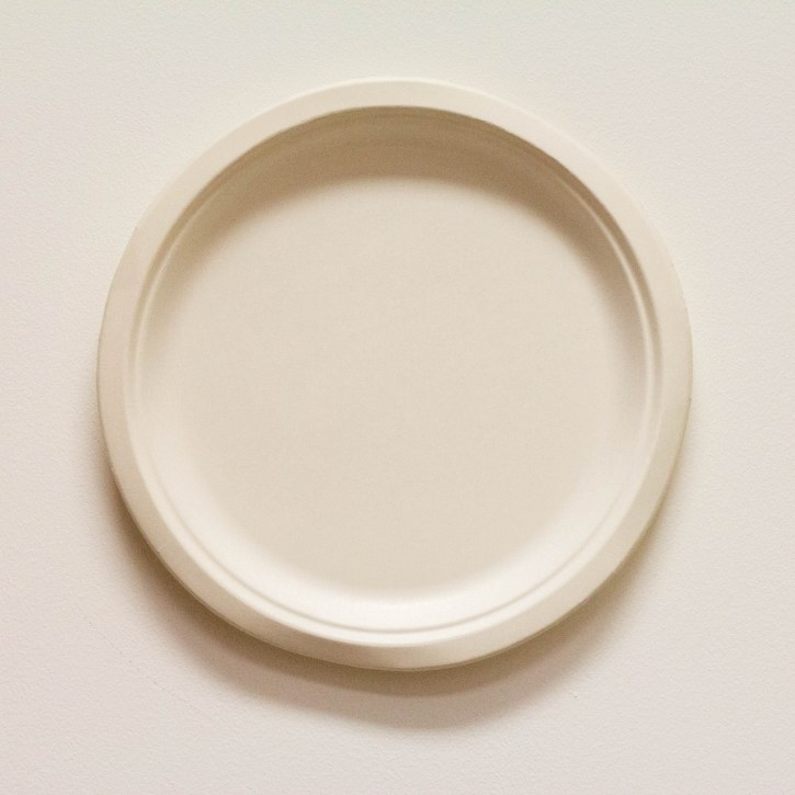 Biodegradable 10 white plate