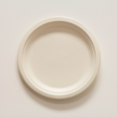 Biodegradable 9 white plate