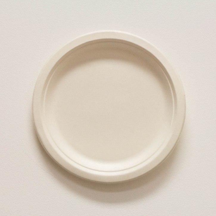 Biodegradable 9 white plate