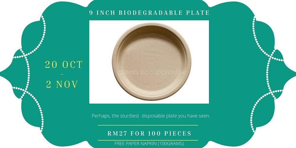 Dinner plate is a must for home parties.