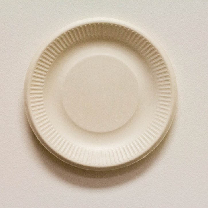 Paper Plate 6