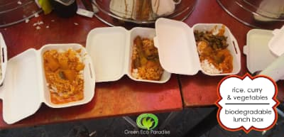 A vegetarian meal served on the biodegradable lunch box.