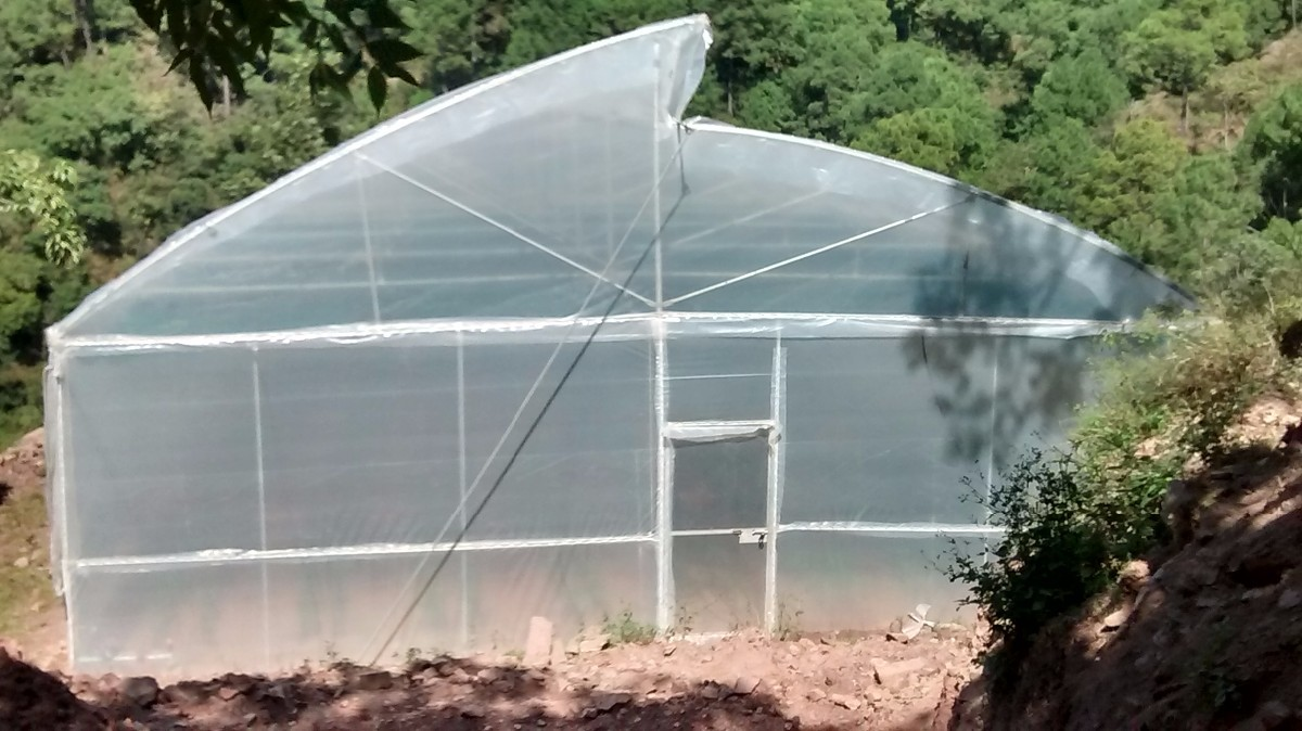 Poly House Net House Polyhouse and Greenhouse Solan
