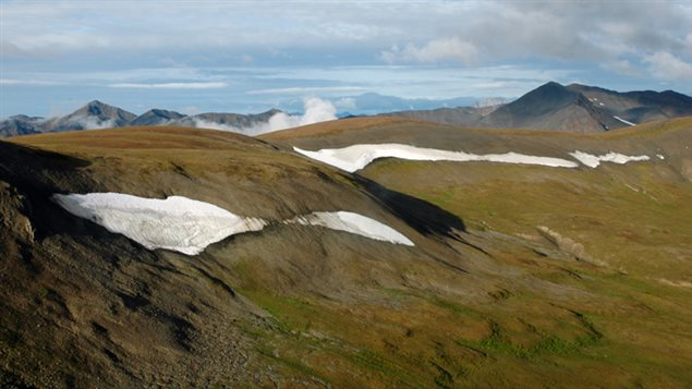 NWT ice patch landscape (Photo Credit: T. Andrews / GNWT)