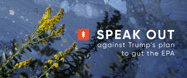 04-14 speak out