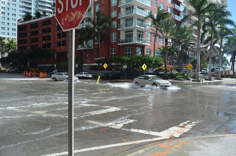 Sunny day flooding in Miami due to rising seas (Photo: B137, Wikimedia Commons)