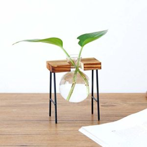 Small Glass Bowl Planter With Stand Apartment Living