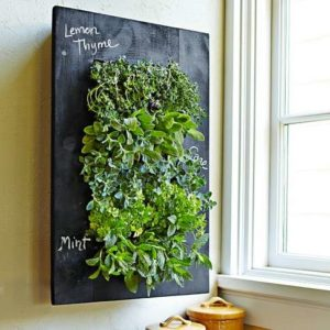 Chalkboard Wall Planter Apartment Living [tag]