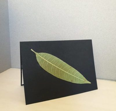 DIY Card Making With Dried and Pressed Leaves