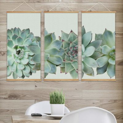 Succulent Inspired Scrolls Apartment Living [tag]
