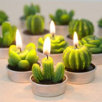 Cocomoon Cactus Tealight Candles Accessories