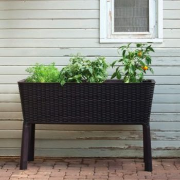 Keter Easy Grow Self Watering Raised Garden Bed Apartment Living