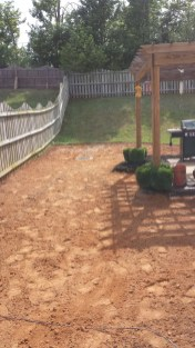 Anderson Yard Makeover (35)
