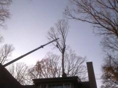 Crane Removal (47)