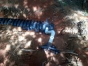 Drain Field Repair (14)