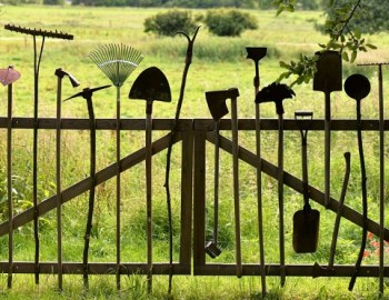 Guerilla Gardening: Der grüne Kampf