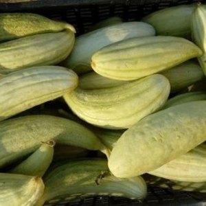 Βιολογικά λαχανικά - Ξυλάγγουρο