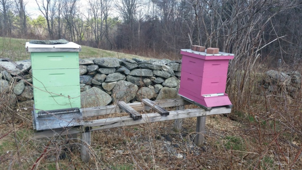 pink and mint green beehives