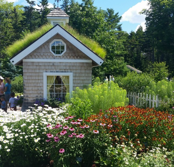 playhouse at Coastal Maine Botanical Gardens