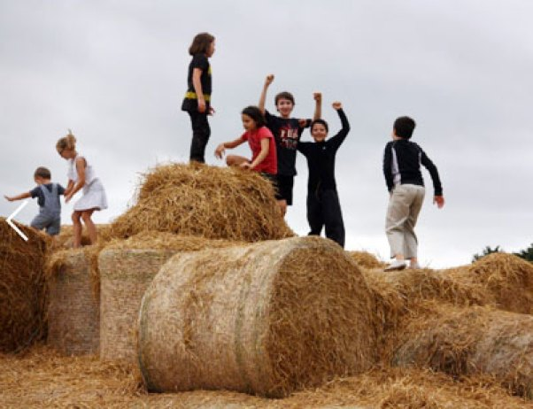 Straw Bale Mountain