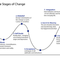 The Seven Stages Of Change