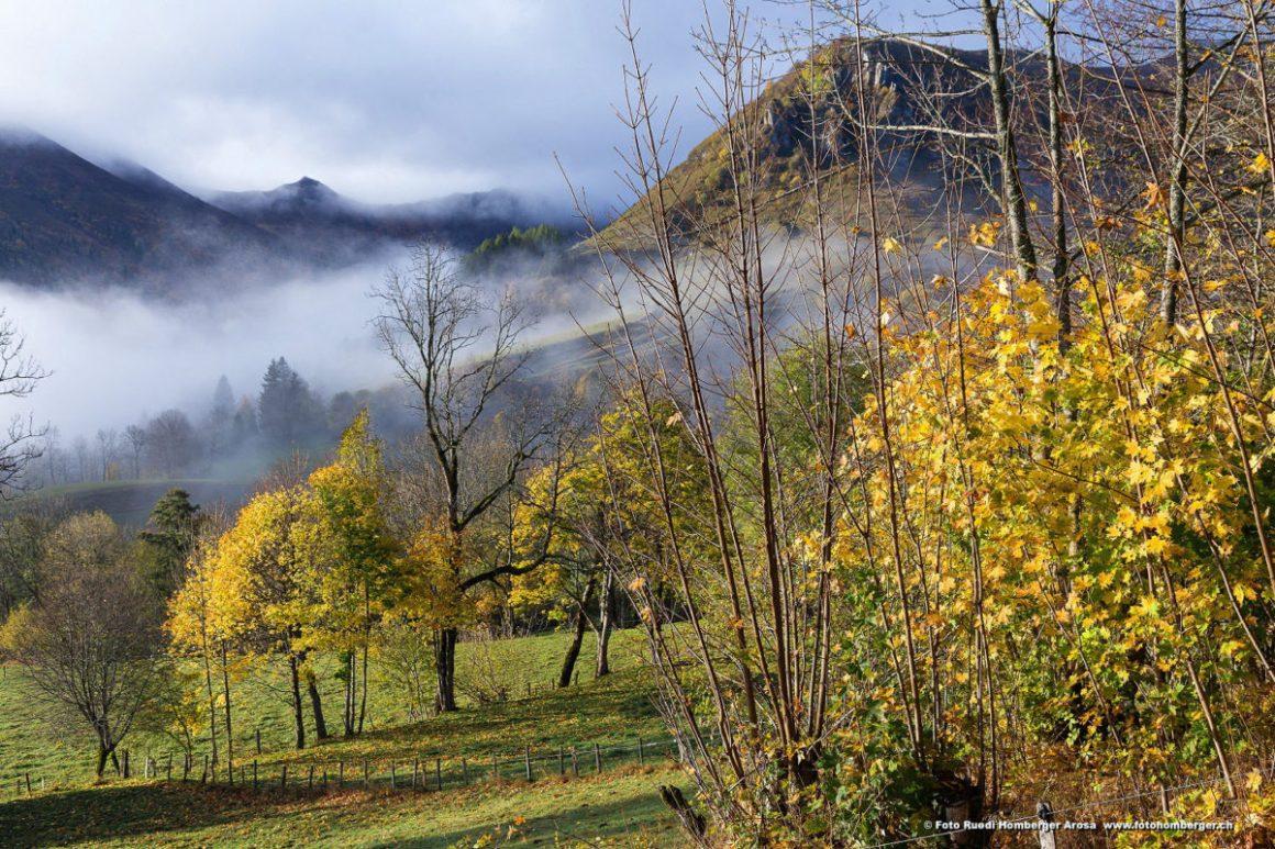 Nature alentour, Alta Terra dans le Cantal. © Ruedi Homberger