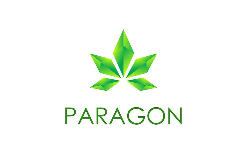 img_paragon-1.jpg?fit=850%2C531&ssl=1