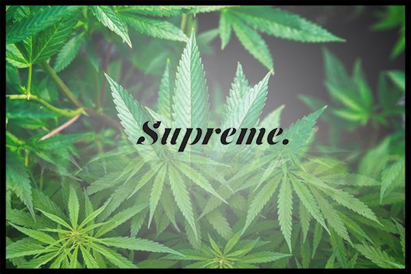 supremecannabis-dec17.jpg?fit=600%2C400&ssl=1