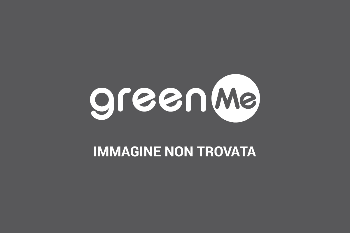https://i1.wp.com/www.greenme.it/images/bambini_fotovoltaico.jpg