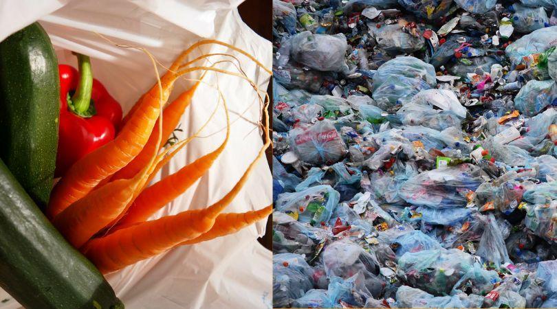 How To Replace Your Plastic Vegetable Storage Bag From Refrigerator - Greenmoksha