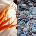How-to-replace-your-plastic-vegetable-storage-bag-from-refrigerator-0.jpg
