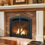 Jotul GZ 450 gas fireplace