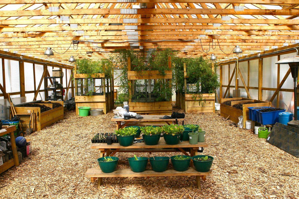 Rid-All Green Partnership — Growing Food, Jobs & Green Neighborhoods
