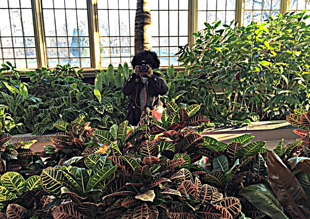 A Visit To Rawlings Conservatory Baltimore Green Obsessions
