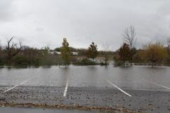 The parking lot and the marsh have become one.