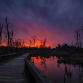 Stalking Sunsets – the art of burn