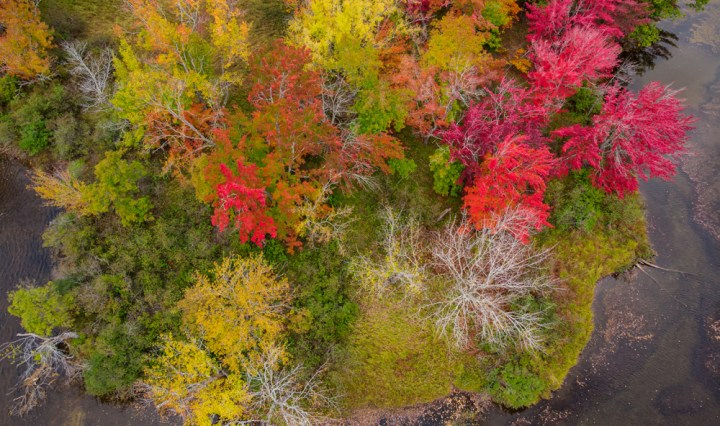 A bird's eye view of the fall