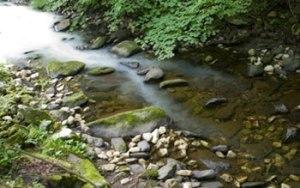 river_carbon3_f