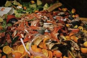 food-waste-537x359