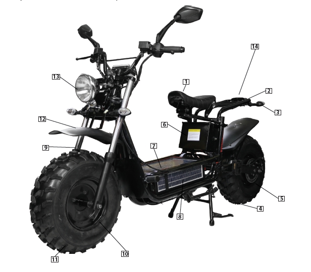 I've dreamed of this, an electric Honda Ruckus!