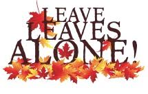 leave leaves alone