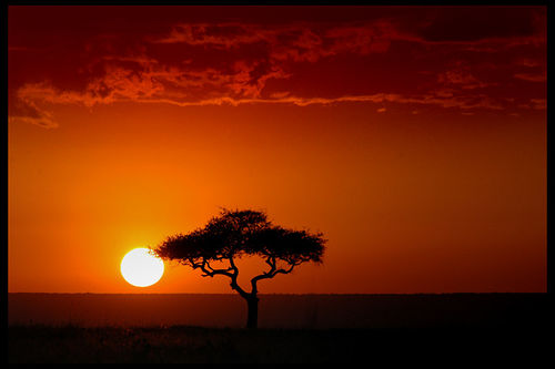 https://i1.wp.com/www.greenpacks.org/wp-content/uploads/2008/06/masai-mara-kenya-sunset.jpg